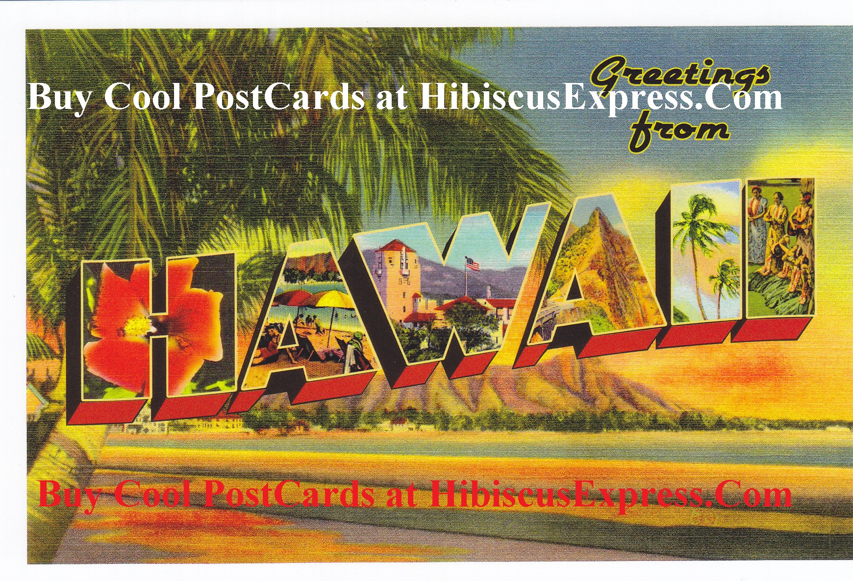 Buy Cheap Fast Greeting Cards Postcards Of Hibiscus Express Usa